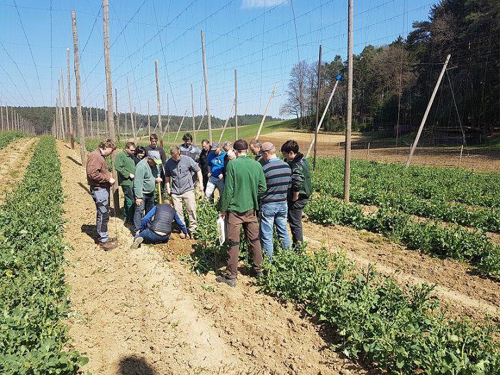 Beteiligte der Bodenallianz der Stadt Paffenhofen sind vor Ort auf einem Feld im Einsatz.