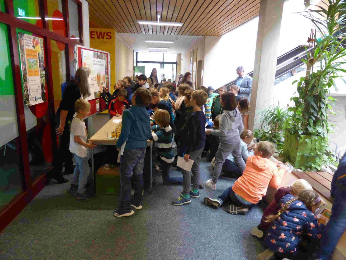 Mehrere Kinder stehen im Flur einer Schule und schauen auf Wandtafeln zum Thema Fairtrade