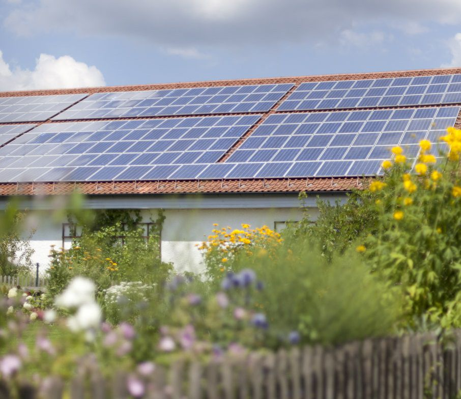 Eine Bürgersolaranlage auf dem Dach eines Hauses in der Gemeinde Ascha neben Sonnenblumen und einem Gartenzaun