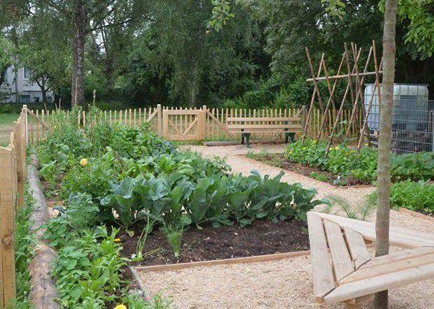 Das Bild zeigt einen Gemüsegarten.