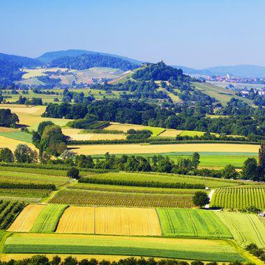 Grüne Wiesen und landwirtschaftliche Flächen liegen im Vordergrund während im Hintergrund Berge und Wälder der Region um Freiburg zu sehen sind.
