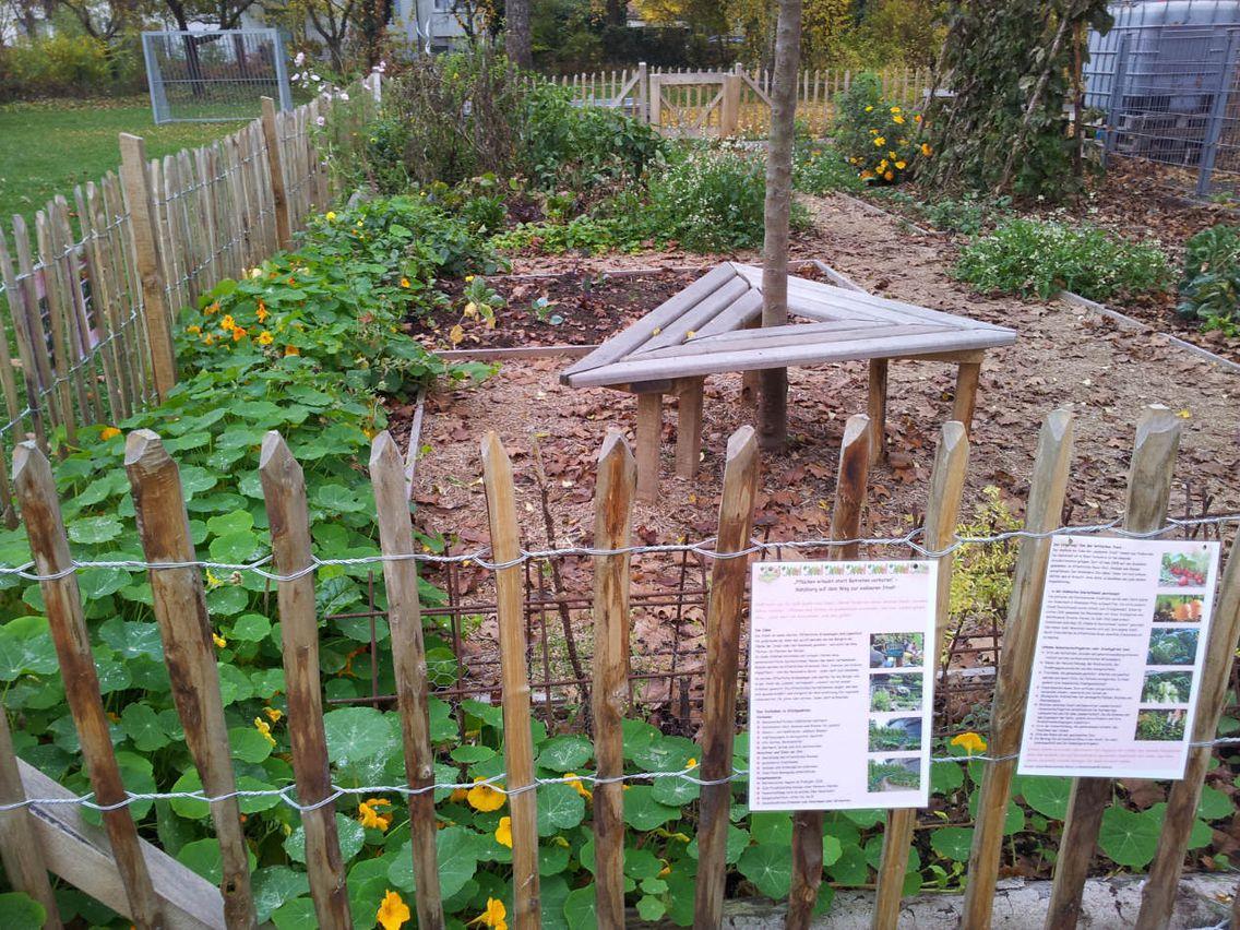 Das Bild zeigt einen Garten.