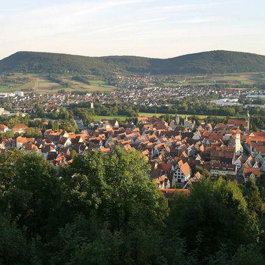 Das Ortsbild von Hersbruck aus der Vogelperspektive. Im Vordergrund sind viele Bäume und hinter der Stadt zwei ausladende Hügel zu sehen.