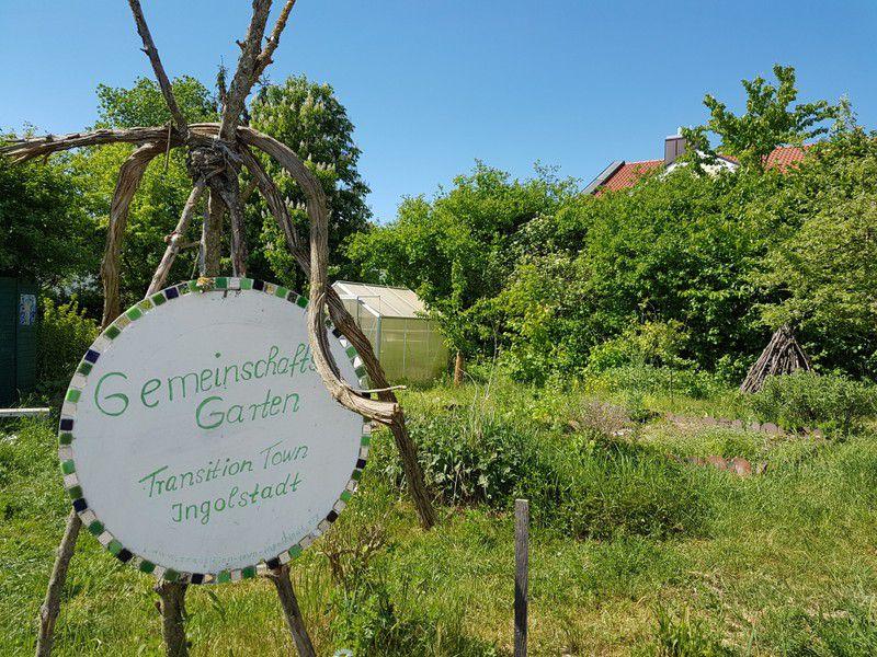 Zu sehen ist das Projekt des Gemeinschaftsgartens der Transition-Town-Initiative IngolSTADT im Wandel.